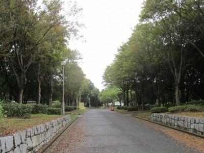 公園利用の自粛について
